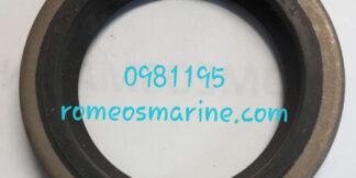 0981195_18-2071_Seal_OMC/BRP