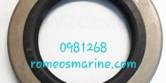 0981268_18-2073_Seal_OMC/BRP