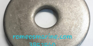 3852540_Washer_OMC/BRP