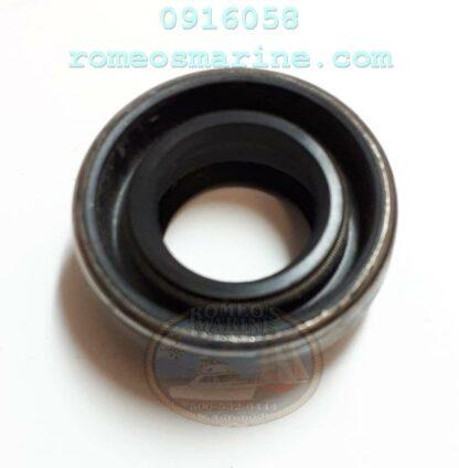 0916058_3853655_18-2068_Seal_OMC_Sierra