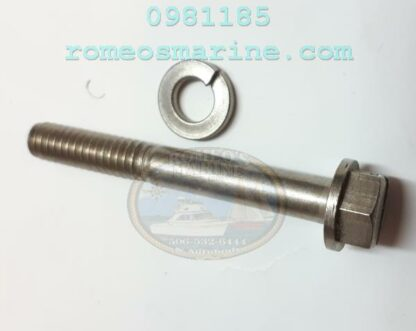 0981185_Screw_OMC