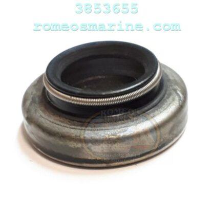 3853655_0916058_18-2068_Seal_OMC_Sierra-01